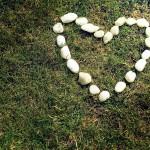 stenen hart in het gras